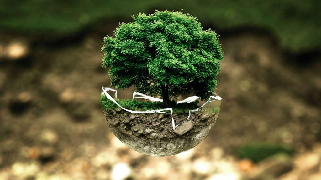 spectacle écologie